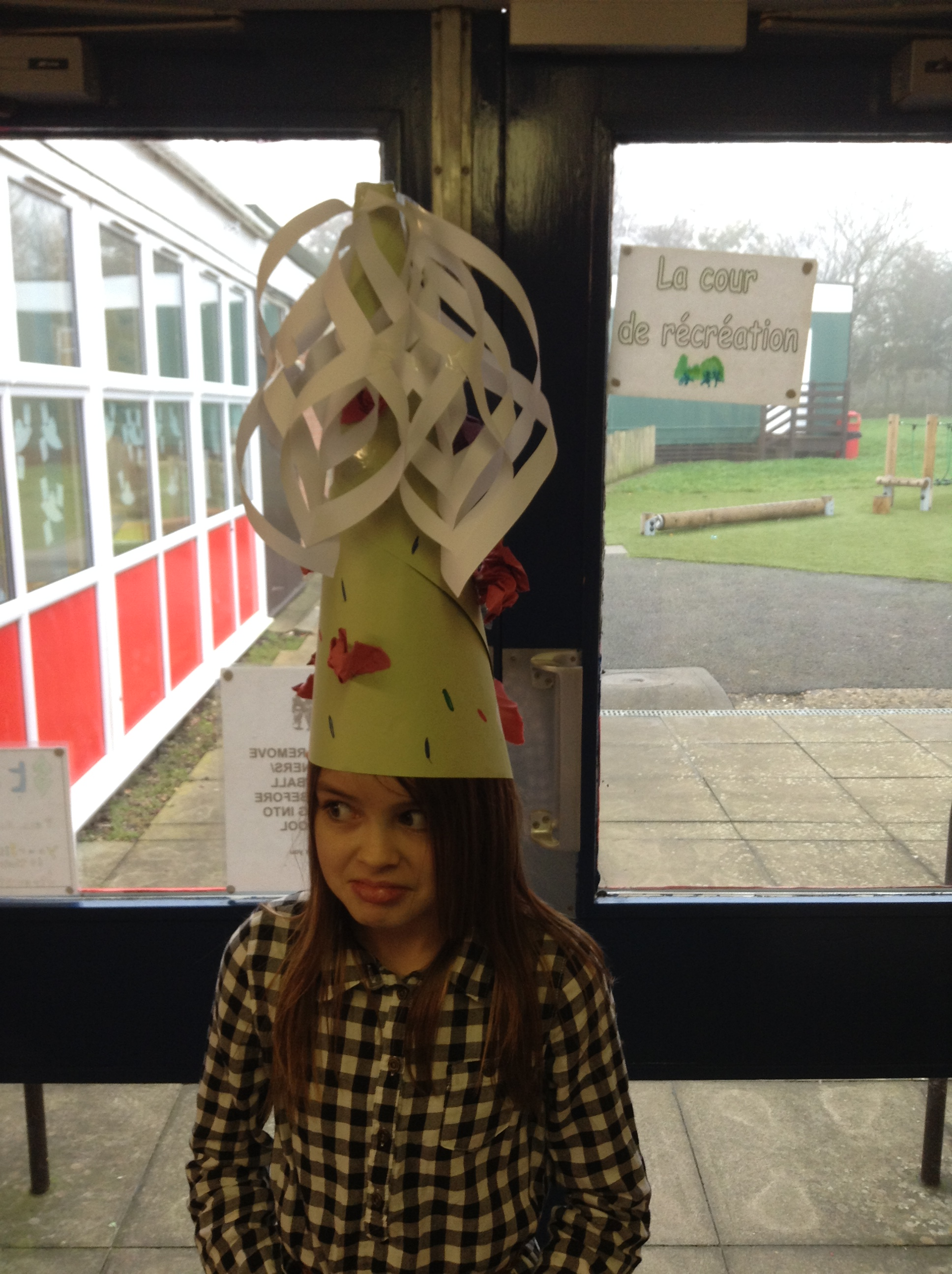 Christmas party hats